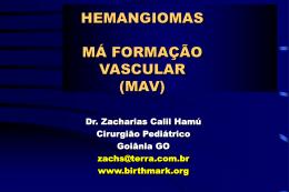 Mecanismos Diretos Estrogenioterapia Bloqueio dos Canais de Cálcio