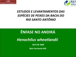 MODELO DE DISTRIBUIÇÃO POTENCIAL DO ANDIRÁ