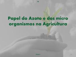 Papel do Azoto e dos Microrganismos na Agricul - pradigital