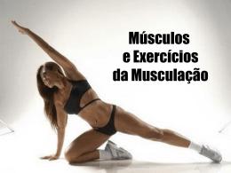 Guia Rapido Musculação