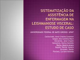 sistematização da assistência de enfermagem na leishmaniose