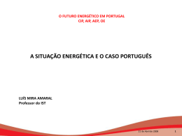 A situação energetica e o caso português