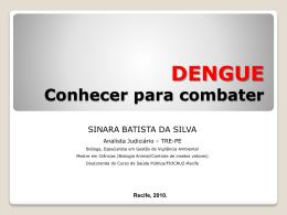 Veja a apresentação com informações sobre a dengue