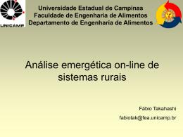 Análise emergética de sistemas rurais ON-LINE