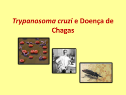 Trypanossoma cruzi e Doença de Chagas