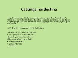 Apresentação sobre Caatinga