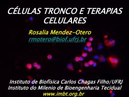 Rosália Mendez Otero