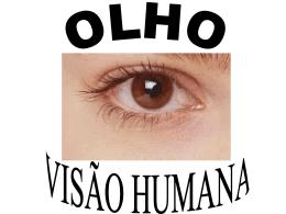 8-olho-e-visao