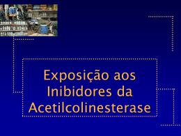 Inseticidas InChE