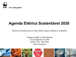 Agenda Elétrica Sustentável 2020 Estudo de Cenários para um