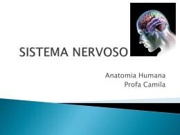 12 - Sistema Nervoso