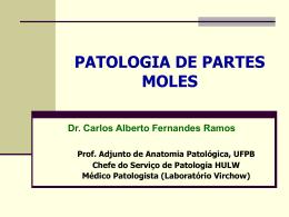 PARTES MOLES revisado ABRALAPAC (NXPowerLite)