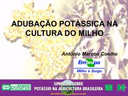 Palestra Antonio Marcos Coelho