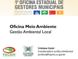 oficina_meio_ambiente_lc140_cristiane_casini