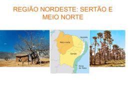 REGIÃO NORDESTE: SERTÃO E MEIO NORTE