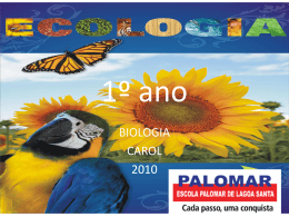 Clique para baixar o arquivo - Escola Palomar de Lagoa Santa