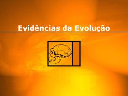 Evidências da Evolução - 3º ano (Ensino Médio)