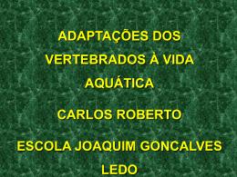AULA6,VERTB CARLOS ROBERTO