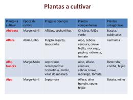 Tabela hortícolas