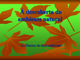 À descoberta do ambiente natural