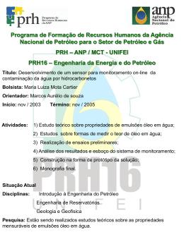 Painel - IV Workshop PRH16 - 2004