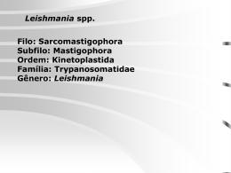 Leishmaníase