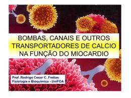 Ca - UniFOA
