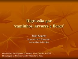 Digressão por `caminhos, árvores e flores`