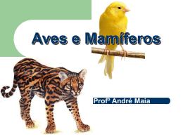 Aves e Mamíferos