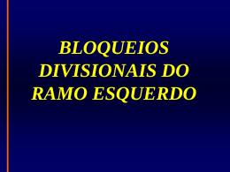 BLOQUEIOS DIVISIONAIS DO RAMO ESQUERDO
