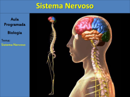Sistema Nervoso - Colégio Machado de Assis