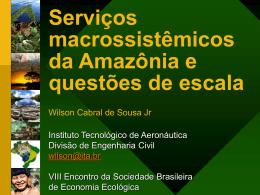 Serviços macrossistêmicos da Amazônia e questões de escala