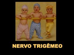 Nervo Trigêmeo - Parte I 2,4 MB