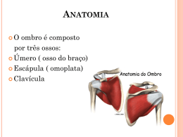 Ana Freitas / Adriana Brasil - Lesão do Manguito rotador (Ombro)