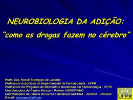 Neurobiologia da adição: o que as drogas fazem no cérebro