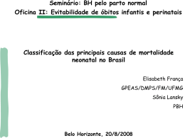 1 Elizabeth França - Movimento BH pelo Parto Normal