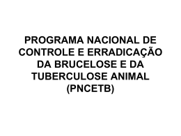 pnceb - Bichos Online