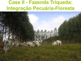 Slide 1 - Fazenda Triqueda