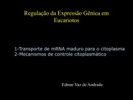 Mecanismos Citoplasmáticos de Regulação em Eucariotos