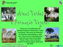 Formações vegetais/áreas verdes