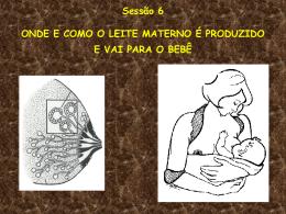 Sessão 6: Como o leite da mama chega ao bebê