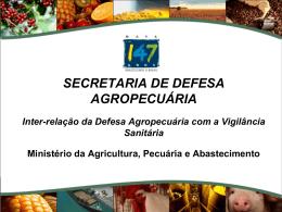 A Força do Agronegócio Brasileiro