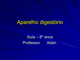 sistema-digestorio-2