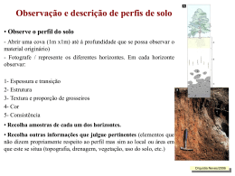 descrição perfil do solo