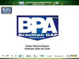 Bovinos de Corte - Movimento Brasil Competitivo