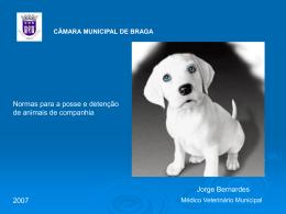 classificação - Câmara Municipal de Braga