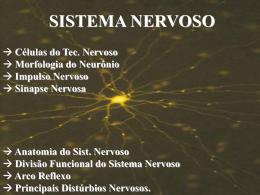 Nervoso