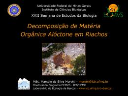 Apresentacao-Marcelo.. - Universidade Federal de Minas Gerais
