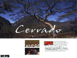 Biomas Brasileiros – Cerrado