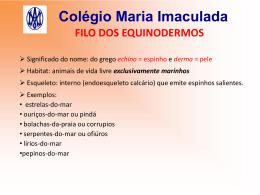 Colégio Maria Imaculada FILO DOS EQUINODERMOS